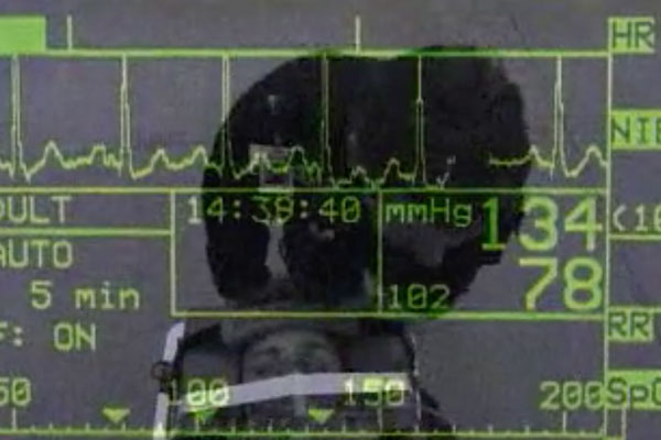 a screen with vitals in green and black